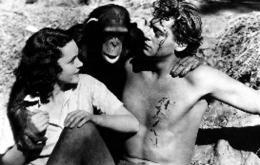 Johnny Weissmuller Tarzan, l'homme singe photo 5 sur 14
