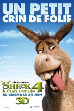 photo 57/153 - Affiche préventive française - Shrek 4, il était une fin - © Paramount