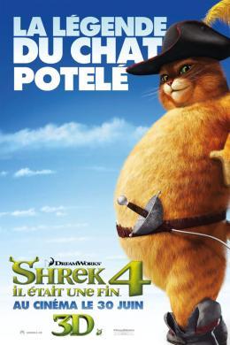photo 56/153 - Affiche préventive française - Shrek 4, il était une fin - © Paramount