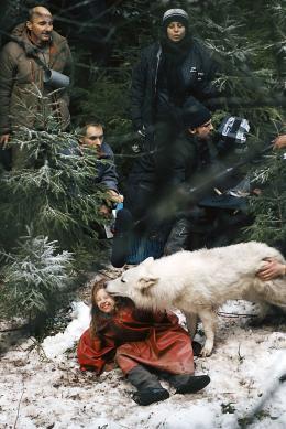 Survivre avec les loups Mathilde Goffart photo 2 sur 16