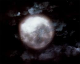 photo 125/136 - Twin Peaks - Saison 1
