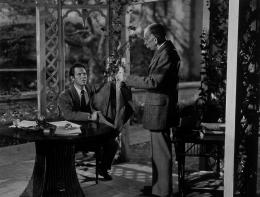 photo 20/23 - Louis Hayward - House by the river - © Wild Side Films
