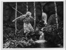photo 2/10 - Les Nibelungen, la vengeance de Kriemhilde - © Mk2
