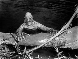 photo 5/10 - Ricou Browning - L'Étrange créature du Lac Noir - © Carlotta Films