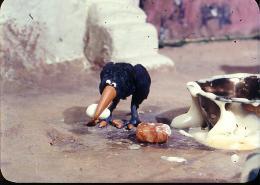 photo 4/15 - Le corbeau et Un Drôle de moineau - © Les films du Whippet