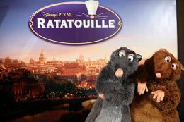 photo 61/122 - Avant-première à Paris - 30 juin 2007 - Ratatouille - © BVI