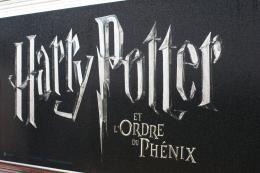 photo 123/127 - Avant-première d'Harry Potter à Paris - Le 4 juillet 2007 - Harry Potter et l'ordre du Phénix - © Isabelle Vautier - Pour Commeaucinema.com 2007