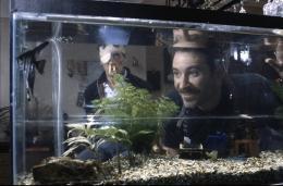 photo 1/7 - Michael Palin, Kevin Kline - Un poisson nommé Wanda - © Fox Pathé Europa (FPE)