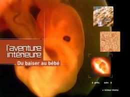 photo 2/2 - Menu Dvd - L'Aventure intérieure : Du baiser au bébé