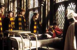 photo 18/29 - Rupert Grint, Emma Watson, Daniel Radcliffe et les autres - Harry Potter et la chambre des secrets