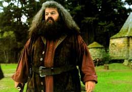 Harry Potter à l'école des sorciers Robbie Coltrane photo 9 sur 22