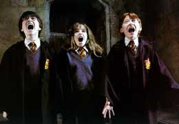 photo 18/22 - Daniel Radcliffe, Emma Watson et Rupert Grint - Harry Potter à l'école des sorciers
