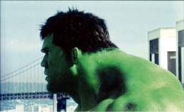 photo 11/14 - Eric Bana - Hulk