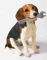 inspecteur gadget chien