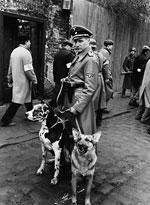 photo 11/11 - La liste de Schindler