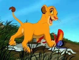 photo 35/44 - Le Roi Lion