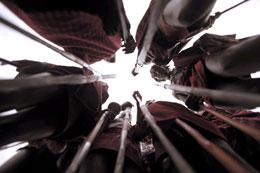 photo 1/8 - Massa�, les guerriers de la pluie