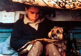 Ma vie de chien photo 5 sur 5