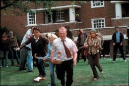 photo 6/13 - Simon Pegg - Shaun of the dead