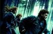 1ère partie des Reliques de la Mort : plus gros succès de la saga Harry Potter