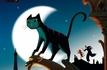 Une vie de chat nommé pour les Oscars 2012 de l'animation