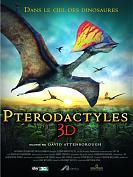 Ptérodactyles 3D