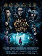 Into the Woods - Promenons nous dans les Bois