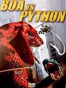 Boas VS Python