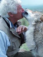 Le Dernier Loup : travailler avec des animaux sauvages