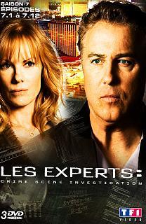 Les Experts - Saison 7