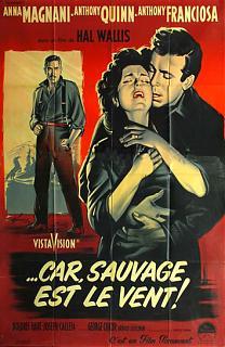 Car Sauvage Est Le Vent