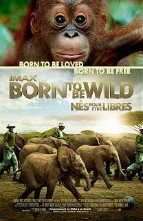 Born to Be Wild - N�s pour �tre libres