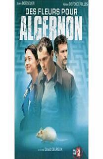 Des Fleurs Pour Algernon - Film 2006