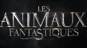 Les Animaux Fantastiques : premi�re photo d�Eddie Redmayne !