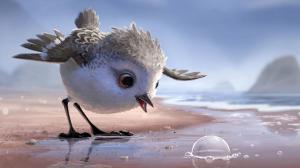Piper : le nouveau court-m�trage de Pixar va vous faire fondre (extrait)