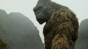 King Kong : une série est en préparation !
