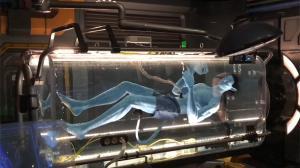 Disney dévoile son parc d'attractions Avatar et c'est SUBLIME