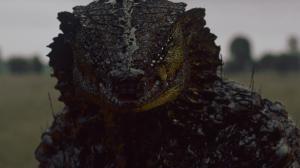 Neill Blomkamp dévoile son court-métrage sci-fi avec Sigourney Weaver