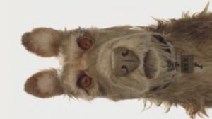 Le prochain film de Wes Anderson enfin daté en France