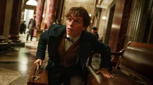 Les Animaux Fantastiques : une nouvelle photo fait écho au premier film Harry Potter