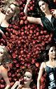 Réservez votre soirée série avec les nouvelles saisons de Desperate Housewives & Weeds