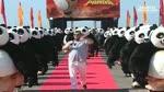 Les Cascades ! : Kung Fu Panda
