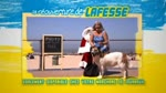 Spot 1 : La réouverture de Lafesse