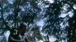 Extrait 4 : Robin des Bois