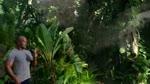 Extrait 5 VOST : Voyage au centre de la Terre 2 : l'île mystérieuse