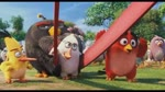 Extrait 1 : Angry Birds le film