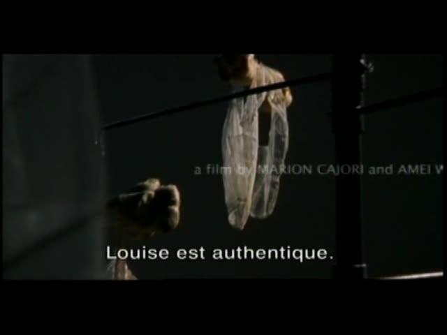 Louise Bourgeois : l'araignée, la maîtresse et la mandarine : Ken Kobland