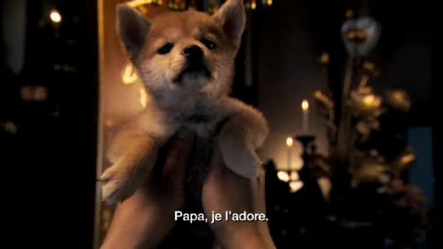 Bande-annonce VOST : Hatchi