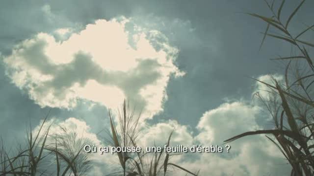 Bi, n'aie pas peur ! : Hoang Tuan Anh