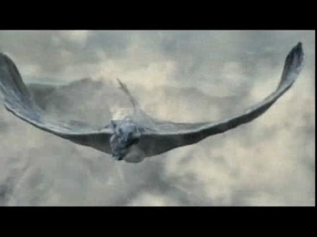 Les chroniques du dragon : Domnica Circiumaru